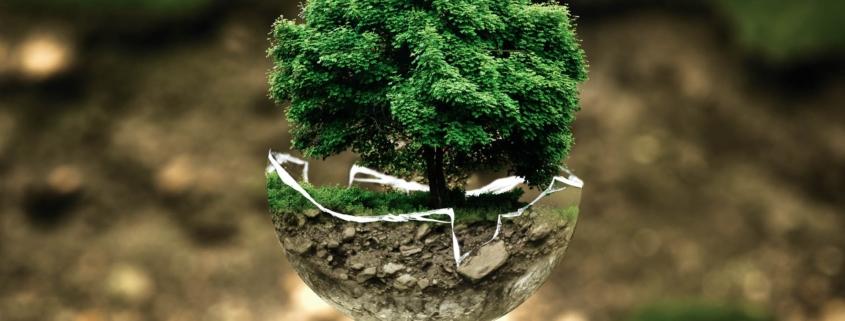 estudios impacto ambiental valencia