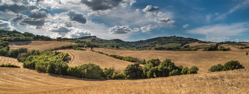 integracion paisajistica