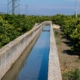 ayudas al campo, ayudas agricultura valencia, ayudas agricultura comunidad valenciana